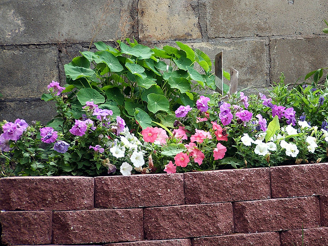 Bed flower idea garden edging 2017 2018 best cars reviews for Garden brick border designs